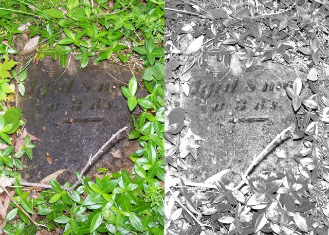 Rude-Snyder Cemetery (aged 8ms 3ds)